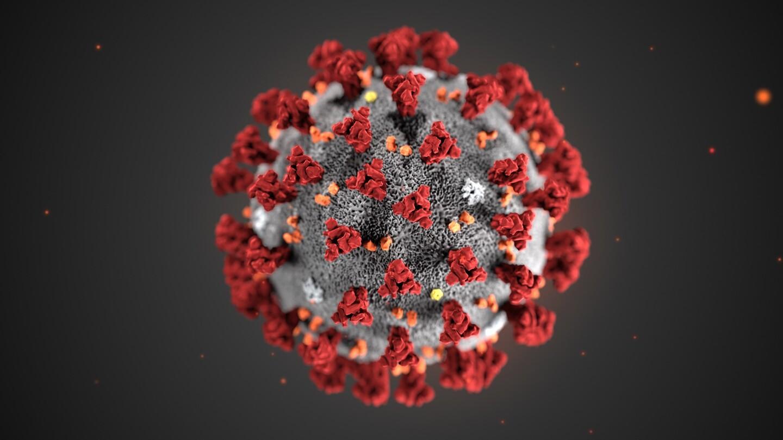 Как работает Сервис при эпидемии коронавируса? | Сервис-Бит