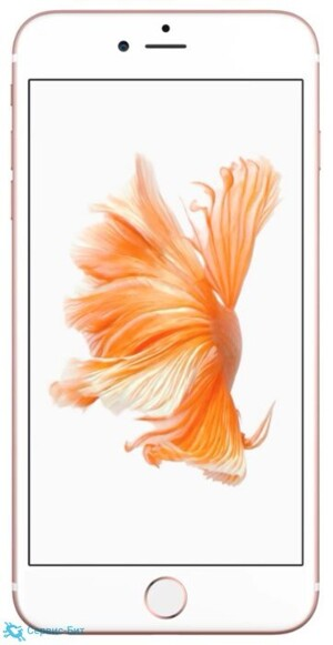 Apple iPhone 6S Plus | Сервис-Бит